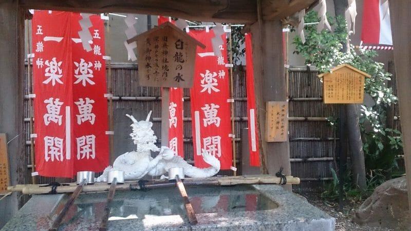 田無神社の手水舎の白龍の水は神水として汲み取りも出来る