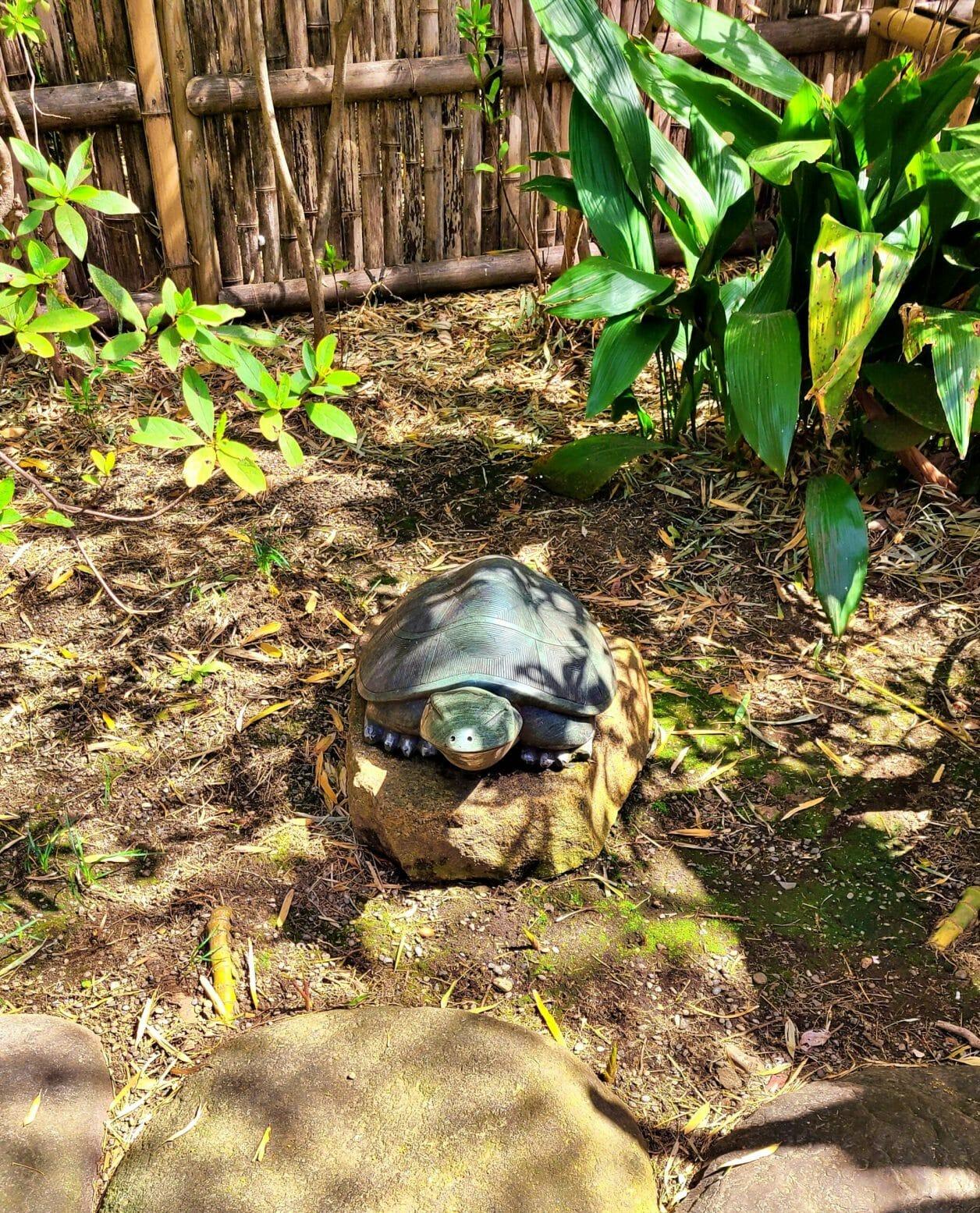 大宮八幡宮参道にある多摩清水舎の境内の亀