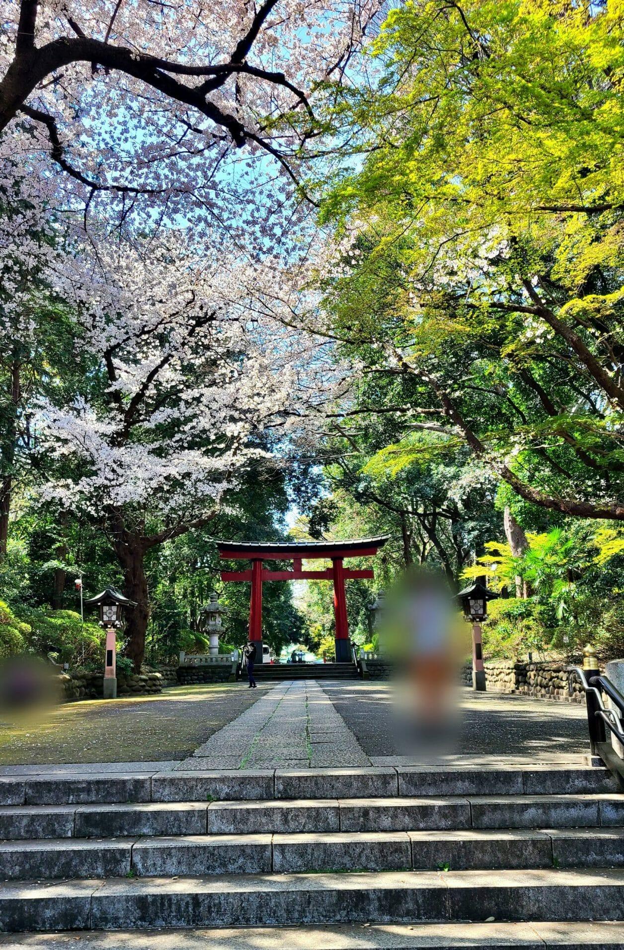 東京のへそ・大宮八幡宮の参道