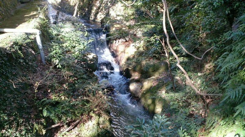 熱海来宮神社の糸川