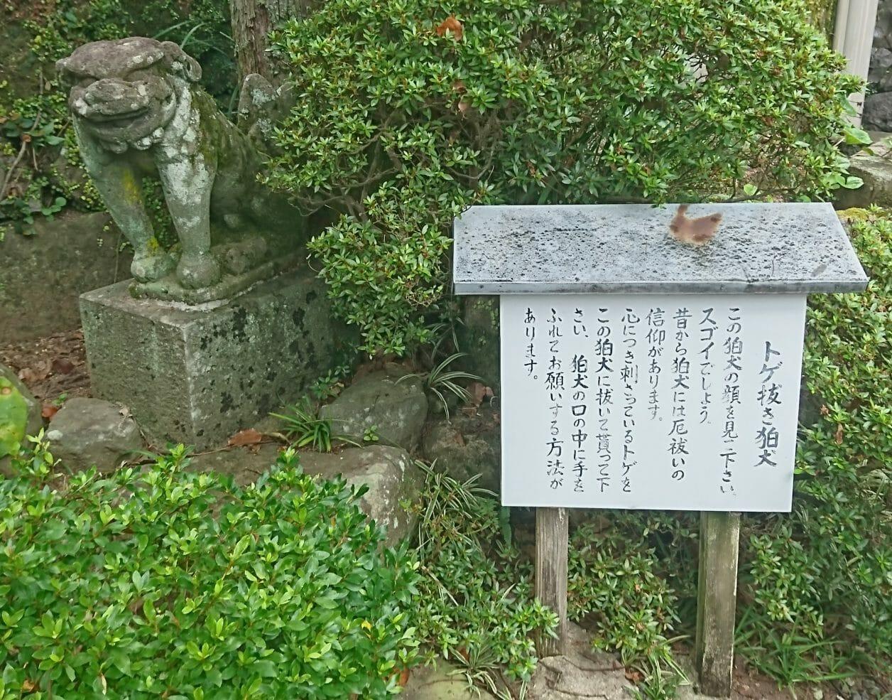 長崎諏訪神社のトゲ抜き狛犬