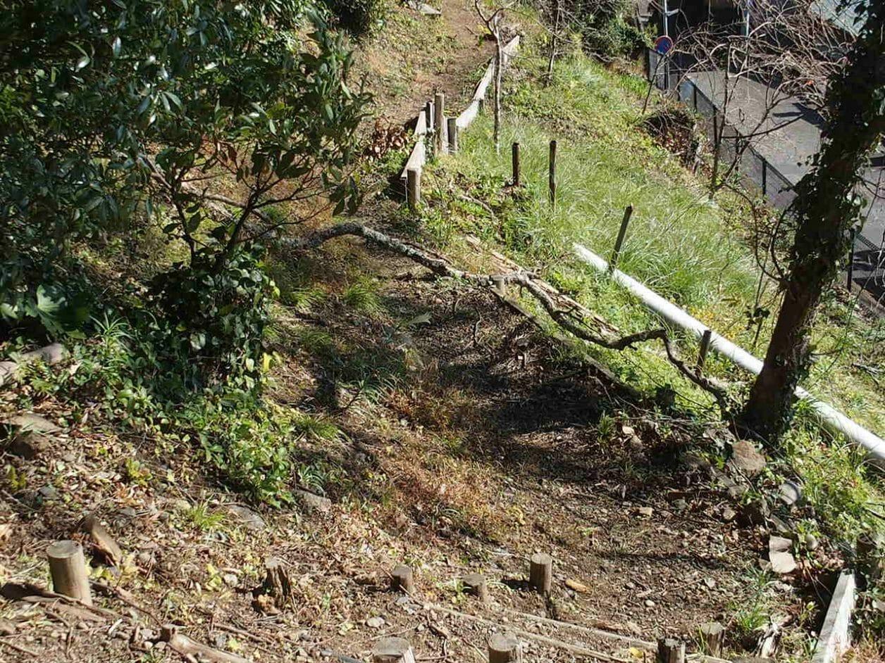 伊豆山神社の境内にある源頼朝と北条政子が歩いたという小径