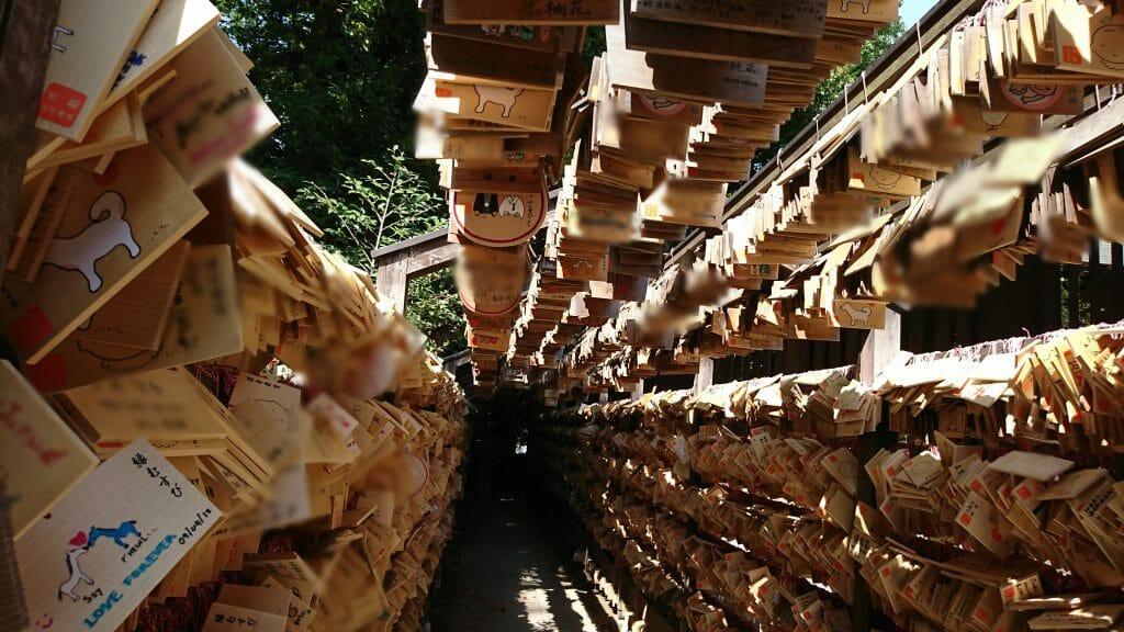 川越氷川神社の絵馬のトンネル