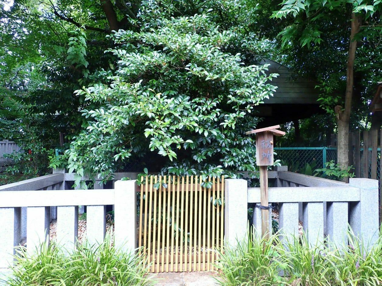 水稲荷神社境内の祓所