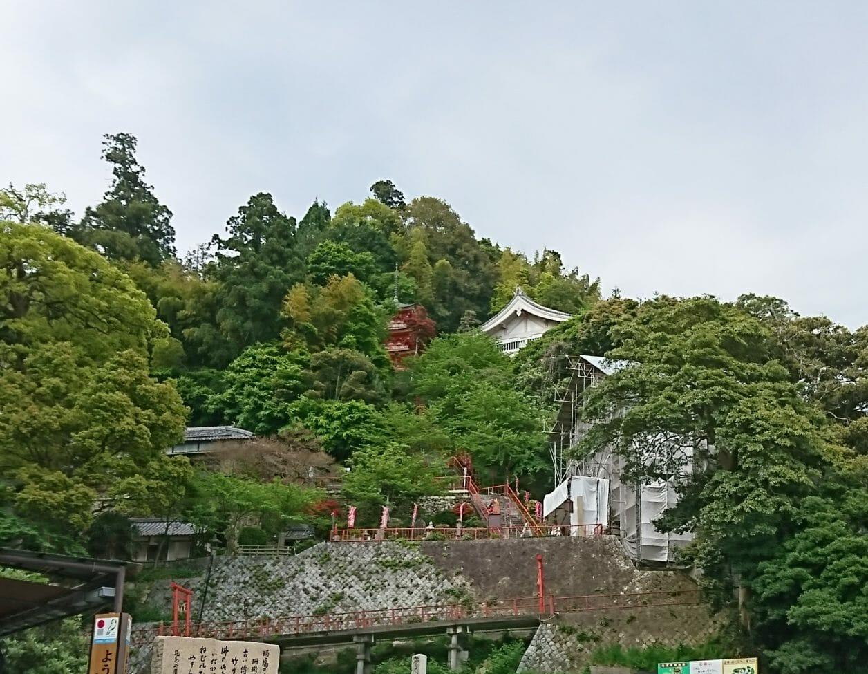 竹生島の港から見えた三重塔