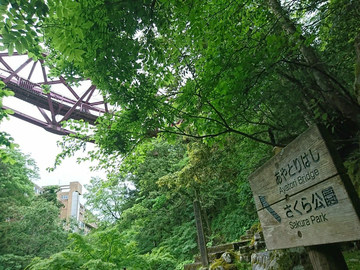 山中温泉街の観光・見どころ
