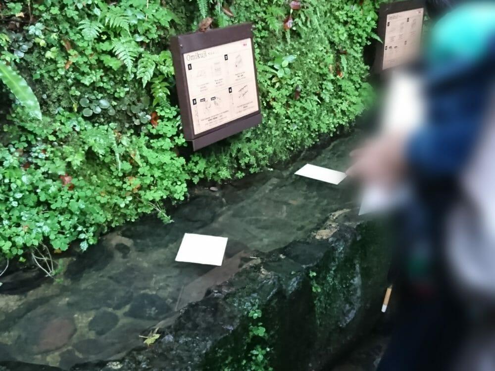 貴船神社で人気の水占みくじ