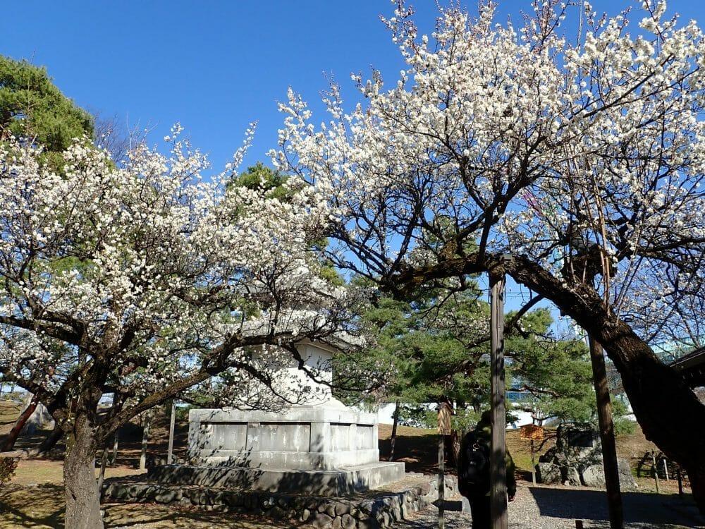 善光寺境内にある東公園