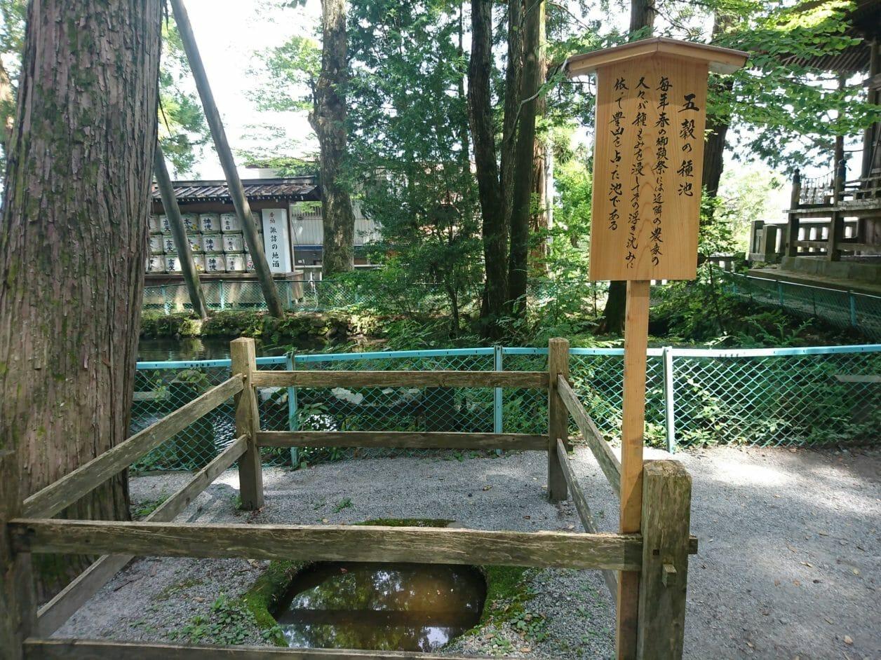 諏訪大社上社本宮の五穀の種池です