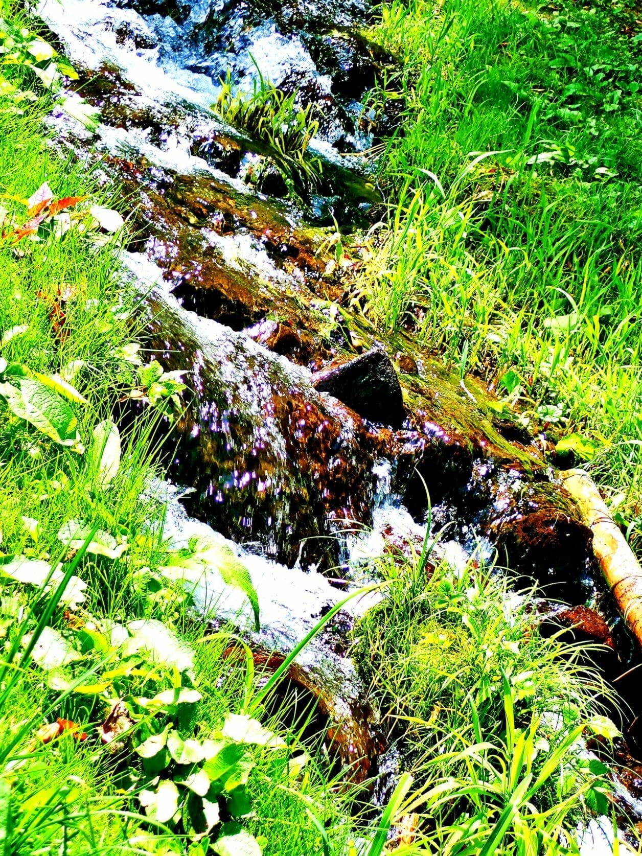 諏訪大社上社前宮を流れる名水水眼の清流
