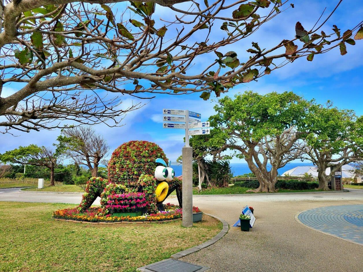海洋博公園の花のタコ